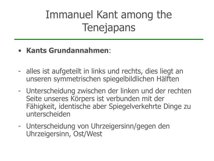 Immanuel Kant among the Tenejapans