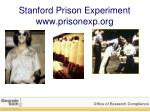 stanford prison experiment www prisonexp org