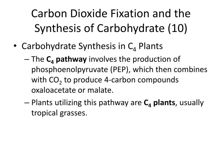 Carbon Dioxide Fixation and the Synthesis of Carbohydrate (10)