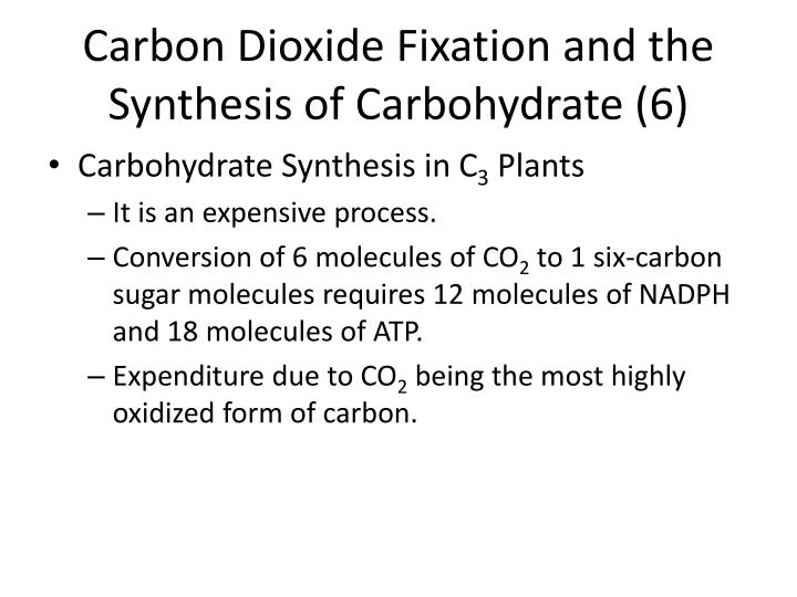 Carbon Dioxide Fixation and the Synthesis of Carbohydrate (6)
