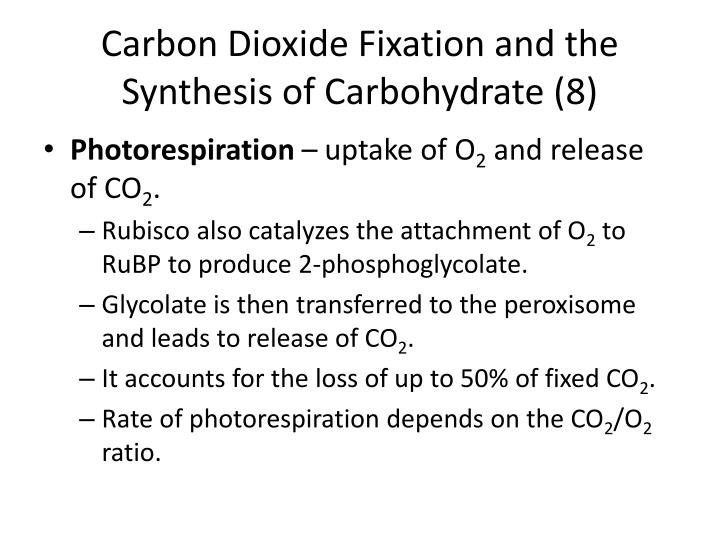 Carbon Dioxide Fixation and the Synthesis of Carbohydrate (8)