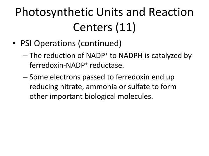 Photosynthetic Units and Reaction Centers (11)