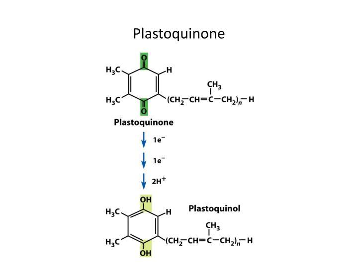 Plastoquinone