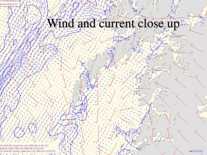 Wind and current close up