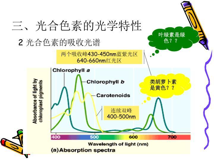 三、光合色素的光学特性