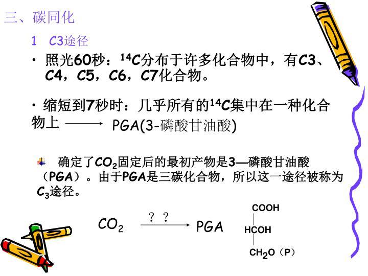 三、碳同化
