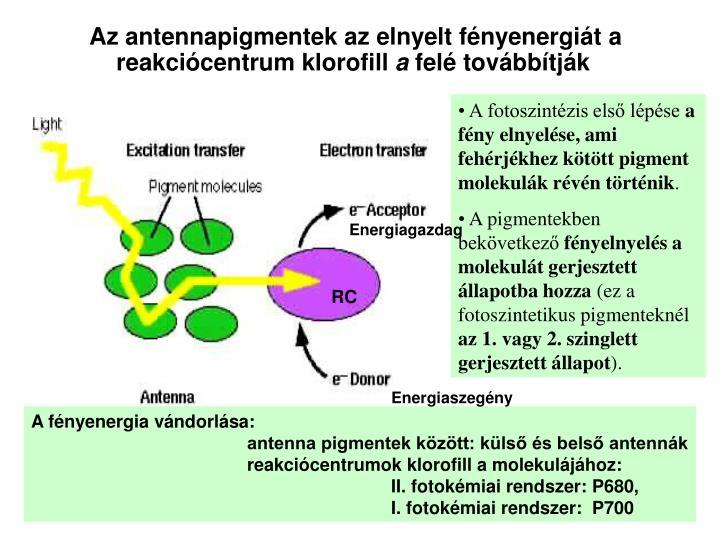 A fotoszintézis első lépése