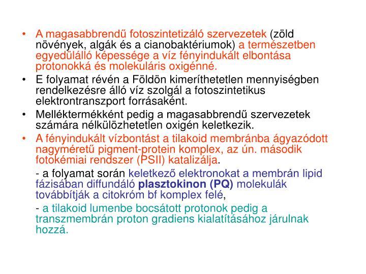 A magasabbrendű fotoszintetizáló szervezetek