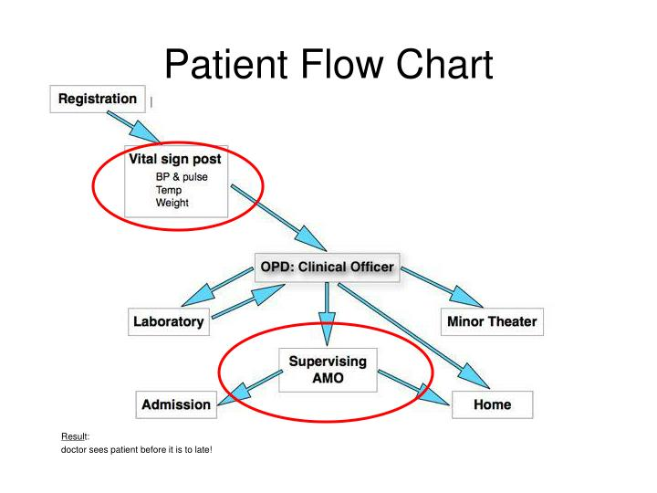Patient Flow Chart