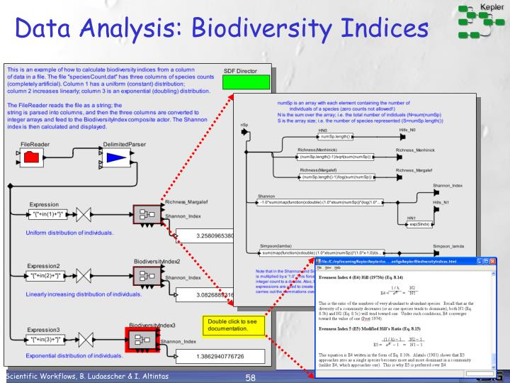Data Analysis: Biodiversity Indices
