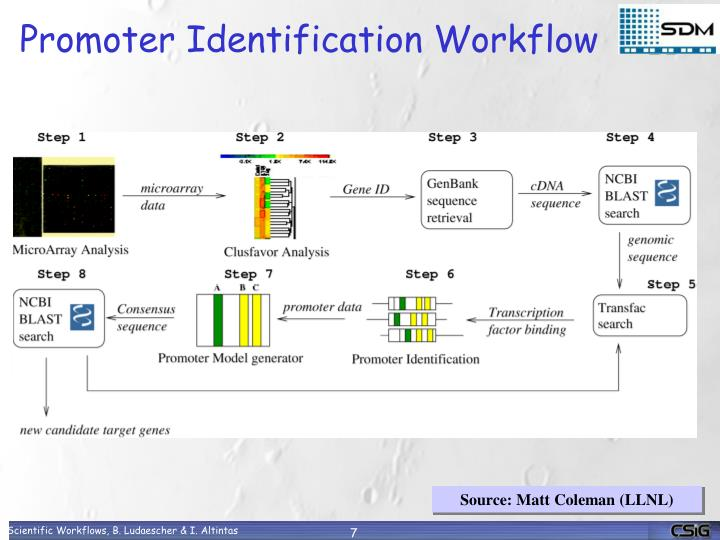 Promoter Identification Workflow