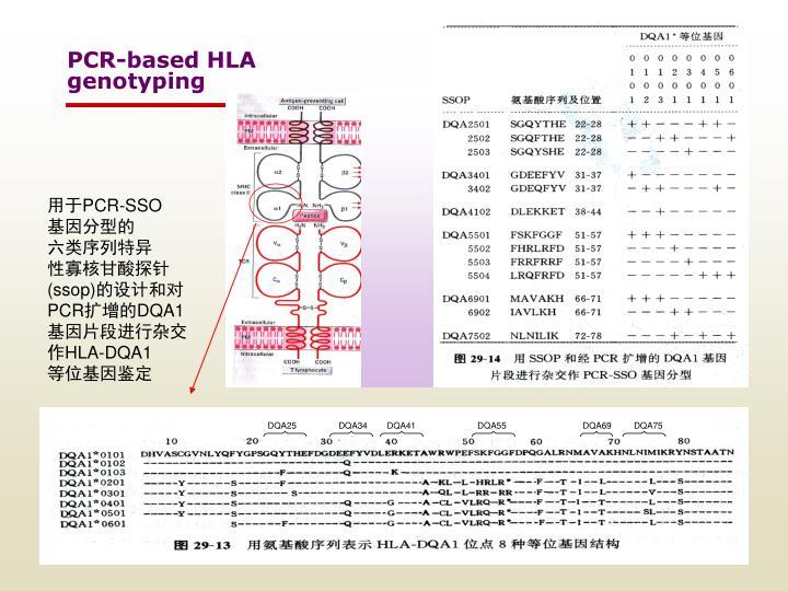 PCR-based HLA
