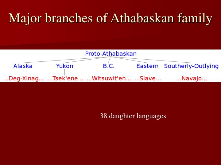 Major branches of Athabaskan family