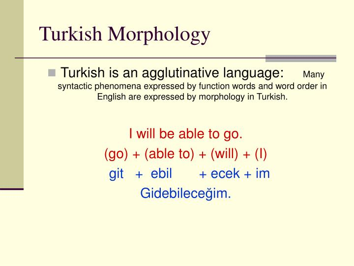 Turkish Morphology