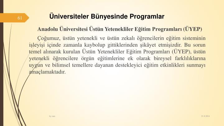 niversitelerBnyesinde Programlar