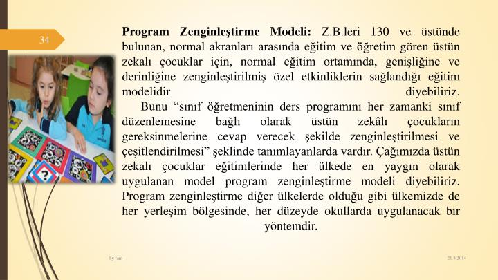 Program Zenginletirme Modeli: