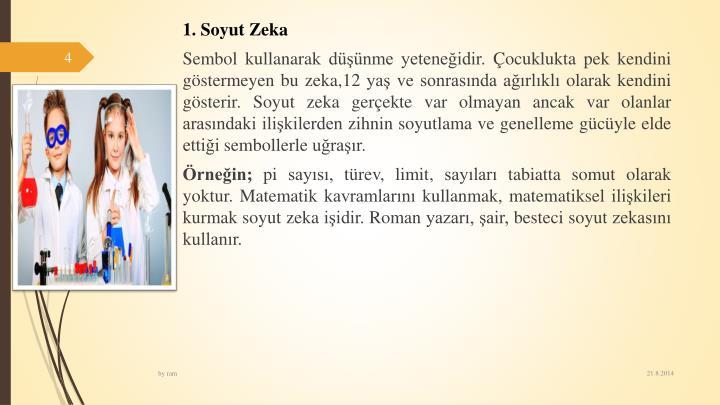 1. Soyut Zeka