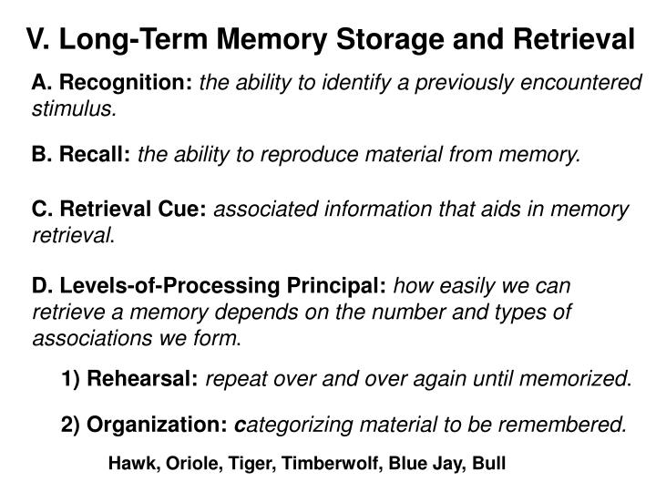V. Long-Term Memory Storage and Retrieval