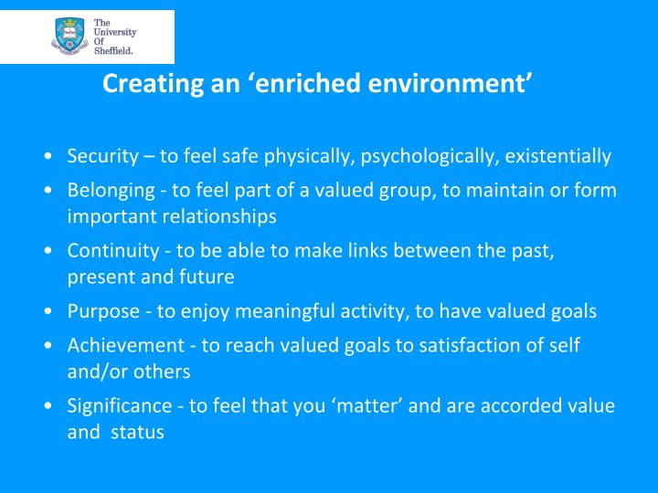 Creating an 'enriched environment'