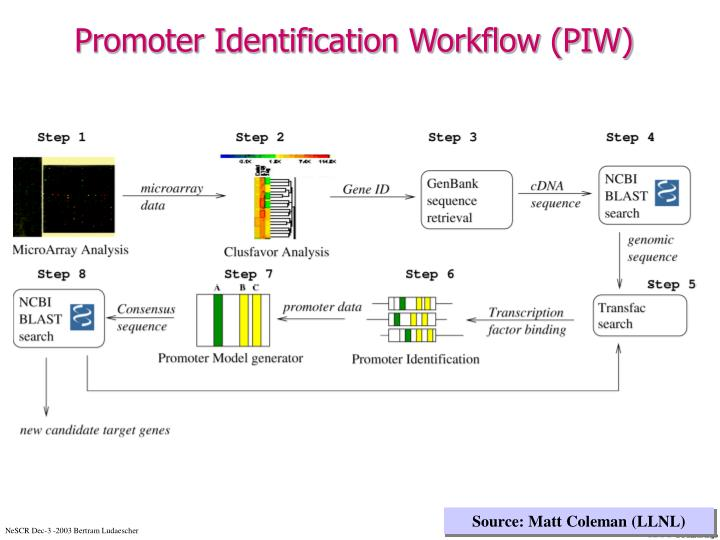 Promoter Identification Workflow (PIW)