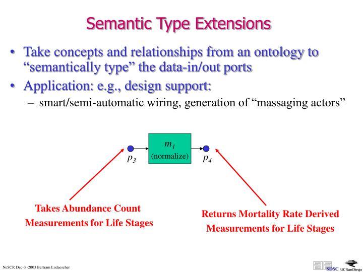 Semantic Type Extensions