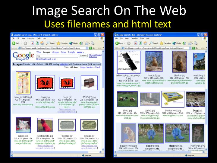 Image Search On The Web