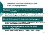 indonesia three clusters of poverty alleviation programmes