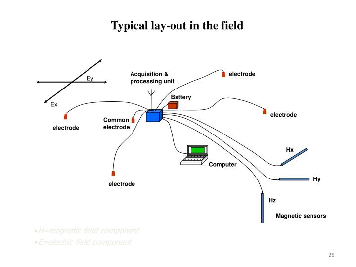 Typical lay-out in the field