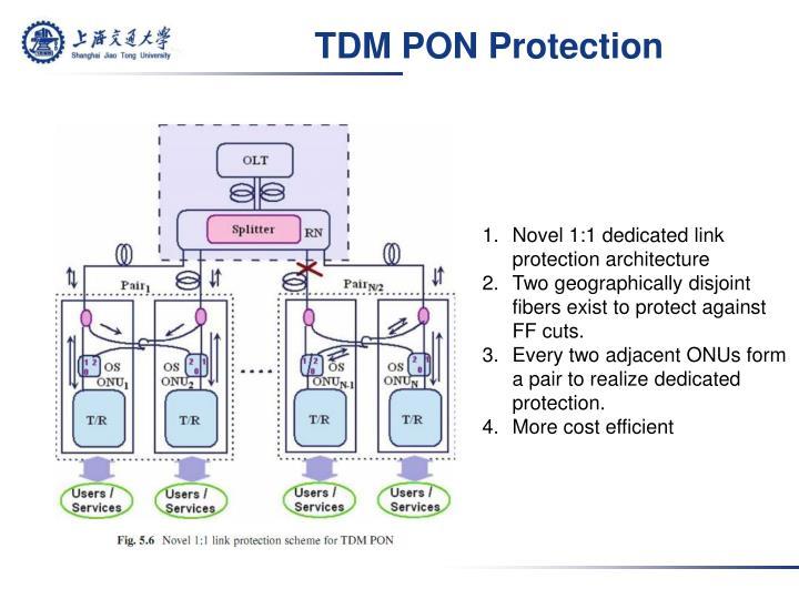 TDM PON Protection