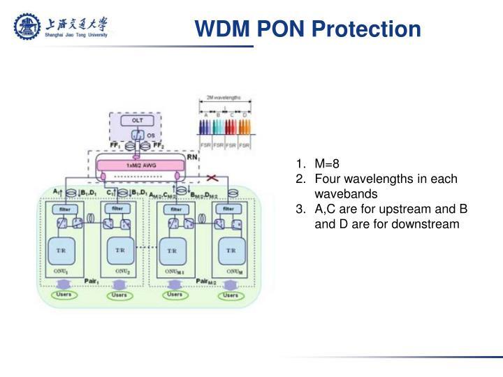 WDM PON Protection