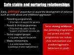 safe stable and nurturing relationships