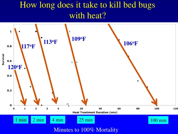 How long does it take to kill bed bugs with heat?