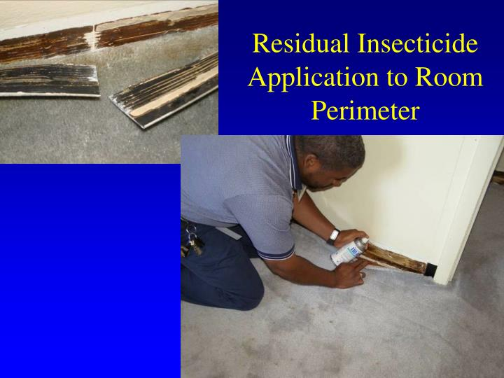 Residual Insecticide Application to Room Perimeter