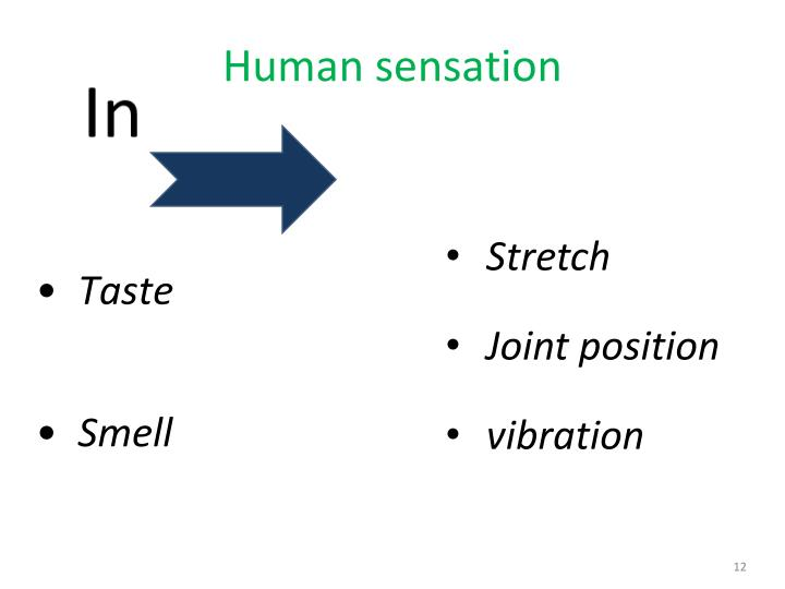 Human sensation