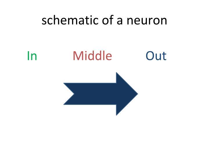 schematic of a neuron