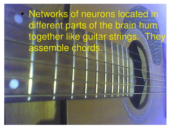 Networks of neurons located in different parts of the brain hum together like guitar strings.  They assemble chords.