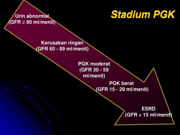 Stadium PGK