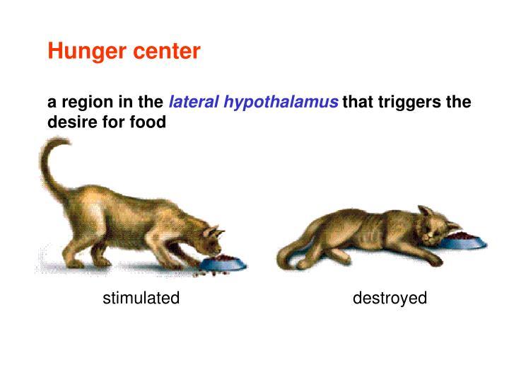 Hunger center