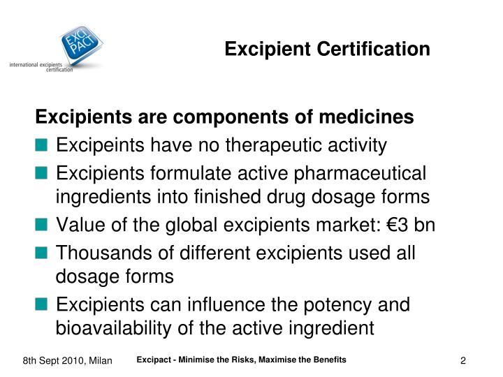 Excipients are components of medicines