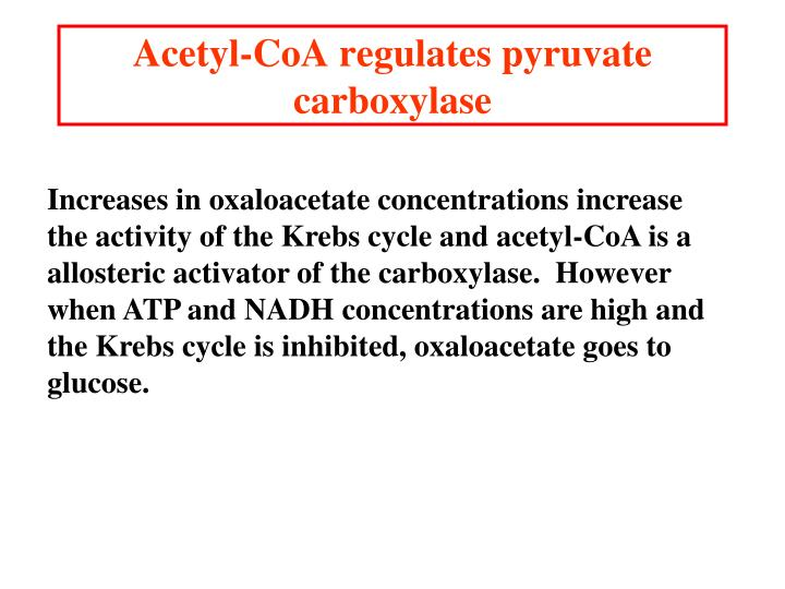 Acetyl-CoA regulates pyruvate carboxylase