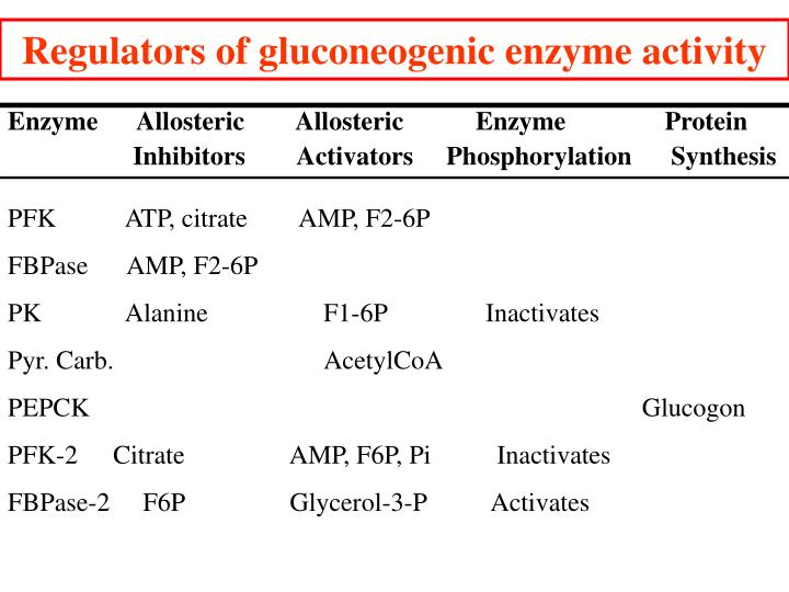 Regulators of gluconeogenic enzyme activity