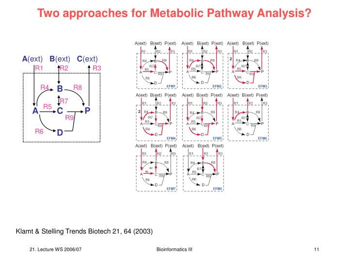 Two approaches for Metabolic Pathway Analysis?