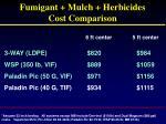 fumigant mulch herbicides cost comparison3