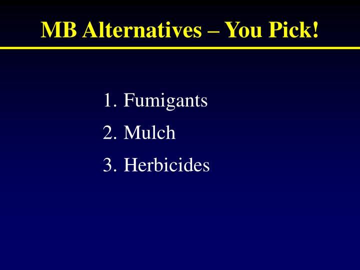 MB Alternatives – You Pick!