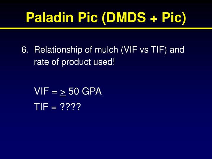 Paladin Pic (DMDS + Pic)