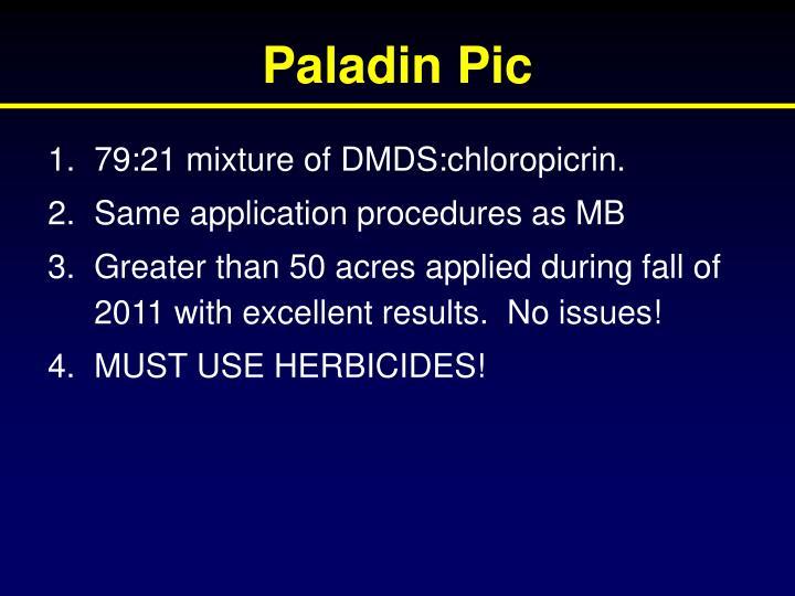 Paladin Pic