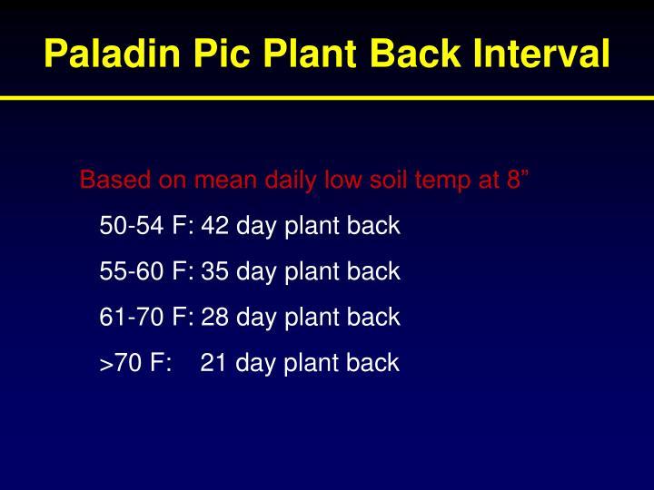 Paladin Pic Plant Back Interval