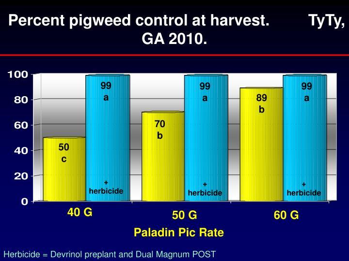 Percent pigweed control at harvest.         TyTy, GA 2010.