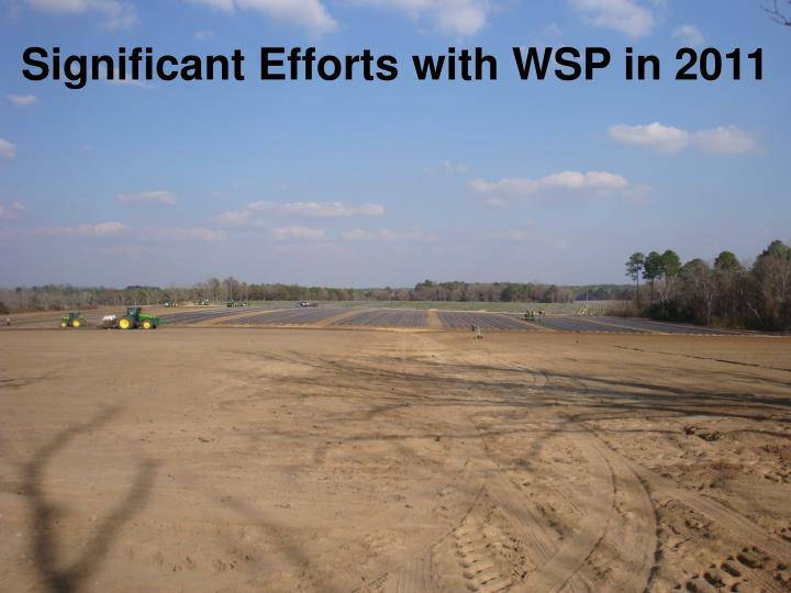 Significant Efforts with WSP in 2011