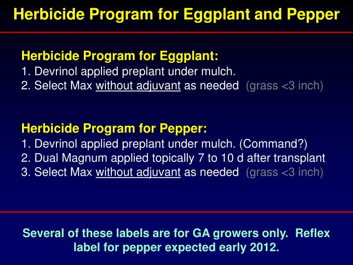 Herbicide Program for Eggplant and Pepper